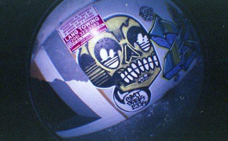 Fisheye skull